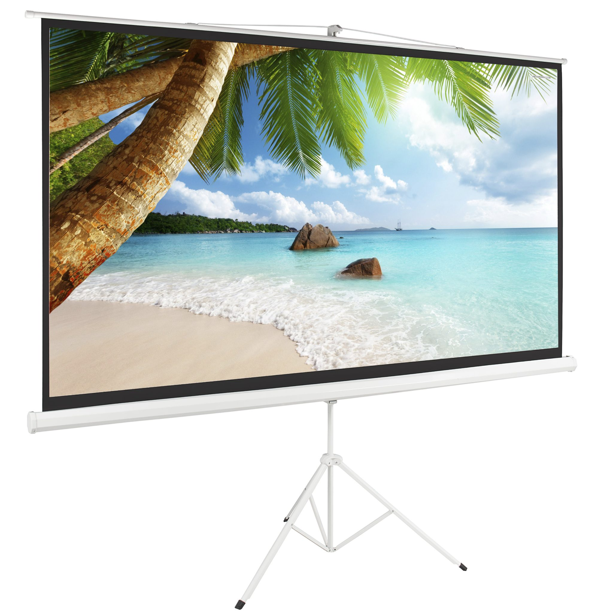 projection screen supplier